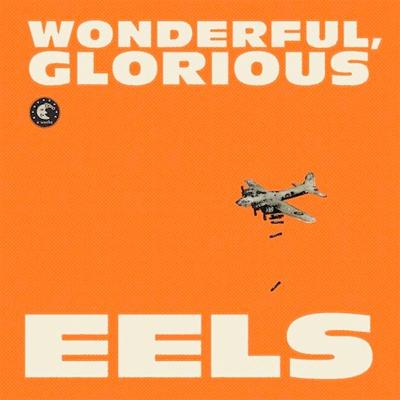 EELS POCHETTE NOUVEL ALBUM WONDERFUL, GLORIOUS