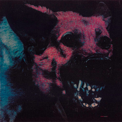 PROTOMARTYR POCHETTE NOUVEL ALBUM UNDER COLOR OF OFFICIAL RIGHT