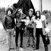 THE DANDY WARHOLS BIOGRAPHIE