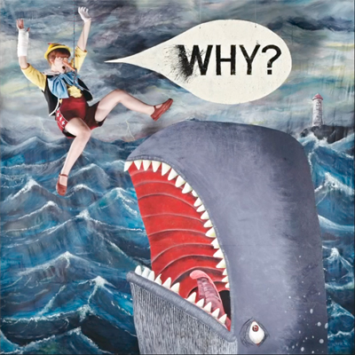WHY? POCHETTE NOUVEL ALBUM MUMPS ETC.