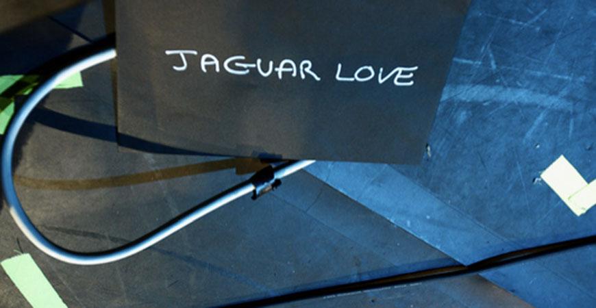 jaguarlove