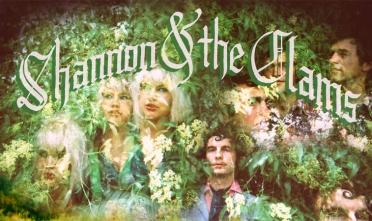 shannon_clams_gone_dawn_album_streaming