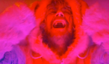 flaming_lips_nidgy_nie_video