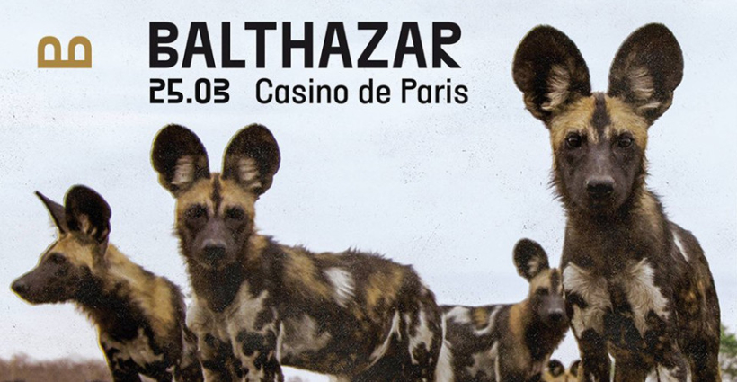 balthazar_concert_casino_de_paris_1
