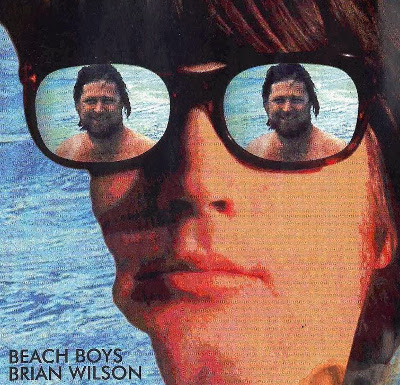 the_beach_boys_plane_1