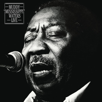 muddy_waters_mississippi_live