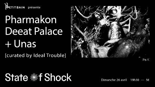 pharmakon_concert_petit_bain