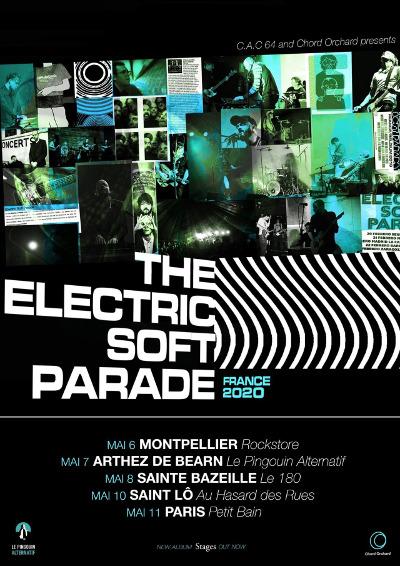 the_electric_soft_parade_concert_petit_bain