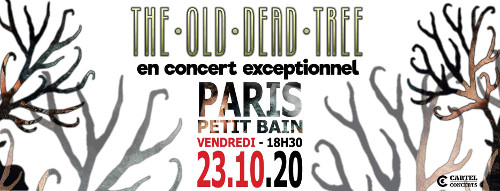 the_old_tree_concert_petit_bain