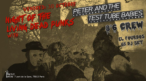 peter_and_the_test_tube_babies_concert_petit_bain