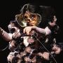 bjork_concert_seine_musicale_2021