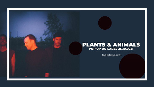 plants_and_animals_concert_pop_up