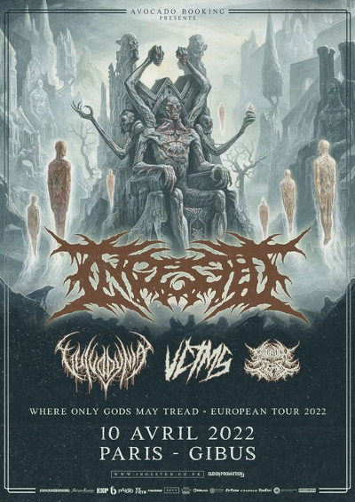 ingested_concert_gibus
