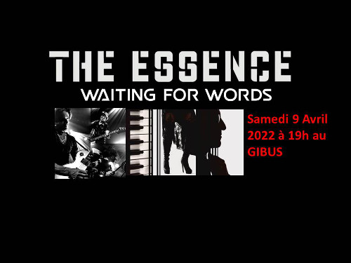 the_essence_concert_gibus