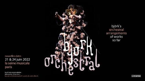 bjork_concert_seine_musicale